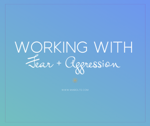 working with fear and agression