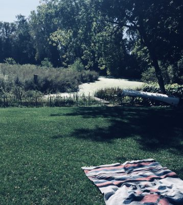 Mindfulness-Contemplate-Counselor-Minneapolis